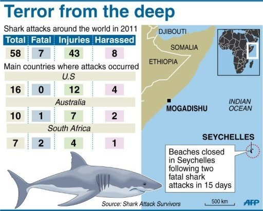 Experts recommend nets after Seychelles shark attacks
