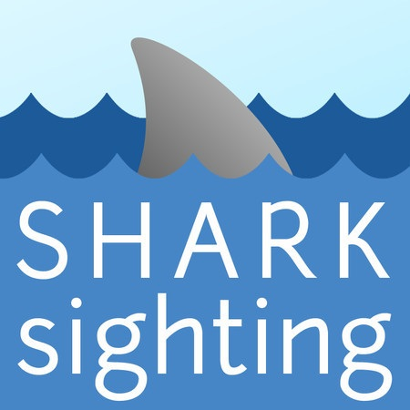 Another Reported Shark Sighting in La Jolla – #SurfReport San Diego