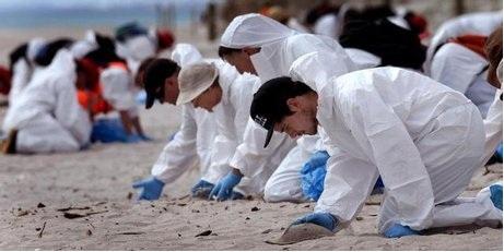 Rena spill: BoP beaches re-open