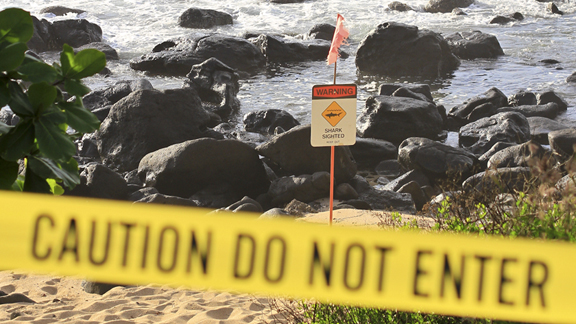 MAUI: Beaches closed after shark attack #SurfReport