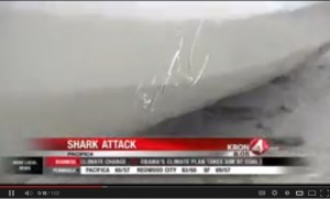 Pacifica Shark Attack