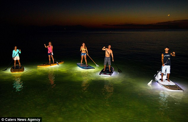 surf's up, lights on! inventor adds leds to paddle boards so, Reel Combo