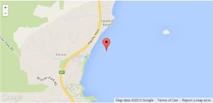 NSW SHARK ATTACK