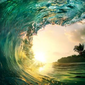custom-wetsuit-wave
